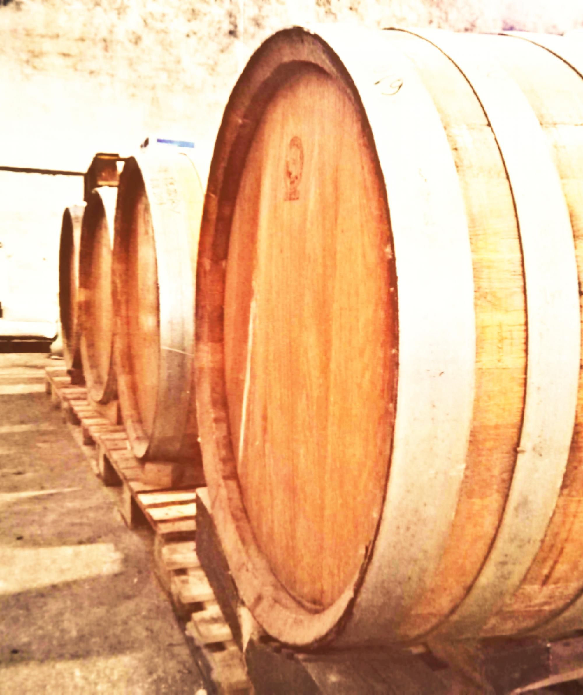 Il vino di Francesca